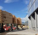 Norwegian sawmils invest heavily in expanding lumber production