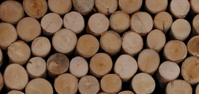 Latvian exports of forestry products up by 8.3% during January