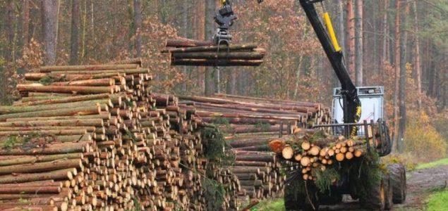 Romanian prosecutors investigate Holzindustrie Schweighofer's headquarters