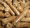 Rising wood pellets prices in Austria