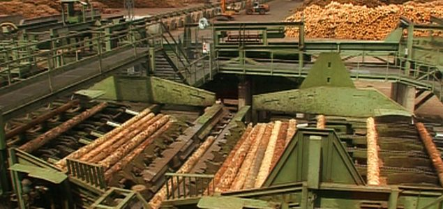 Romanian authorities investigate Holzindustrie Schweighofer in organized illegal logging ring