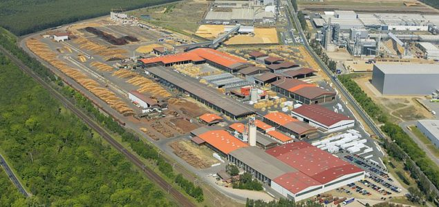Binderholz plans to double sawing capacity at Baruth sawmill