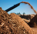 New wood drying technique could reduce transportation costs for biomass