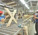 Negative outlook for the Malaysian wood products industry