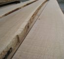 German hardwood sawmills expect stable to rising lumber prices