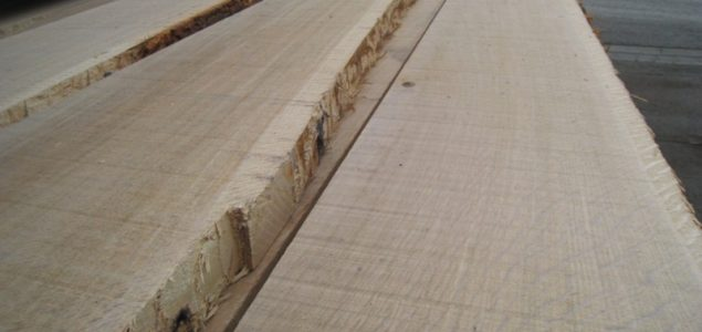 Recent developments of the European oak market