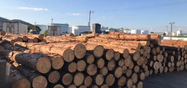 Japan's wood exports reach highest level in 40 years on booming Chinese demand