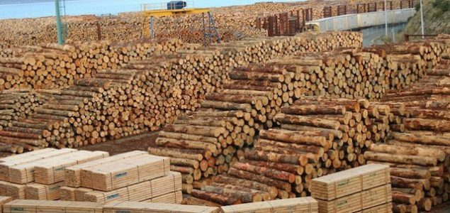 European calamity wood starts to change the Chinese timber market