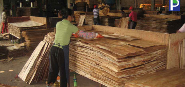 Coronavirus affects India's wood supply chain