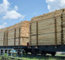 European wood exports to China: is train an alternative to ship?