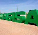 Masisa to sell forestry assets in Chile and Argentina