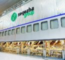 Russian Segezha Group to start construction of a new plywood plant soon
