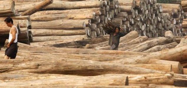 Latest prices for Indian imported wood products