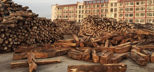 The 10 most important factors affecting the Chinese timber market today