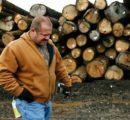 U.S. hardwood industry to disintegrate from trade war with China