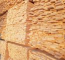 North American softwood lumber prices moderate up