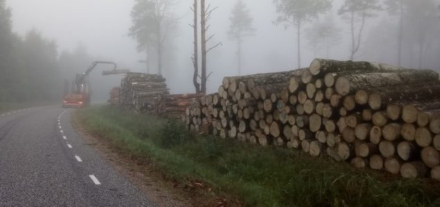 Estonia: Warm winter is impeding logging activity