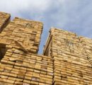 Most softwood lumber prices in North America moderate while plywood prices' surge