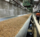 Belarus plans to open ten wood pellet plants in the next 1-2 years