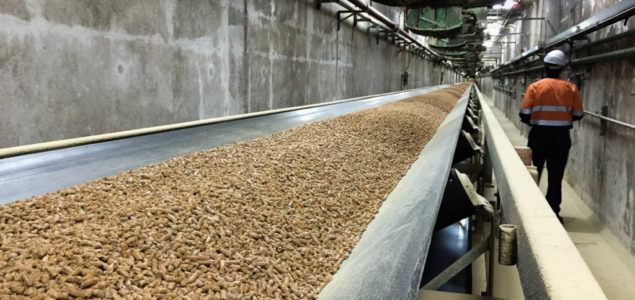Record pellet production in Spain