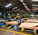 Survey – Impact of pandemic on the Indonesian timber sector