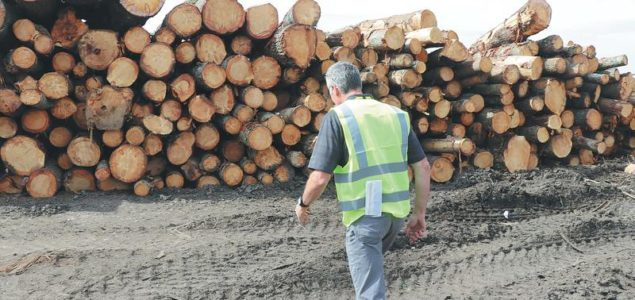UK hardwood trade suffering from lack of finance and poor margins in time of COVID-19