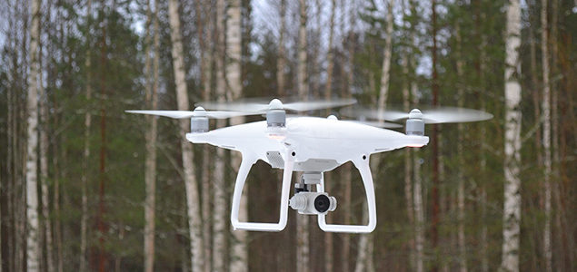 Stora Enso uses drones to identify insect from the air