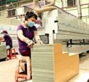 Chinese plywood exports fall sharply in value