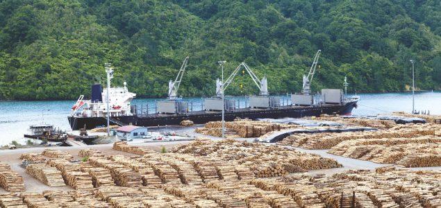 India: Log and lumber import market uncertain