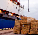 Sharp rise in European softwood lumber exports to US