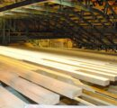 Giant new sawmill to be build in Arizona