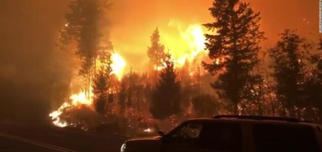 Wildfires negatively impacting Oregon's forestlands and its timber industry