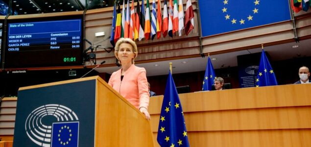 EU climate plan to limit growth in forestry, biomass sector
