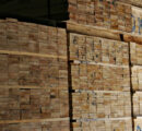 Germany: Rising lumber prices puts wood industry companies under pressure