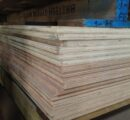 Malaysia plywood industry facing a timber shortage