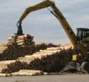 Prices for New Zealand logs exported to China at record levels