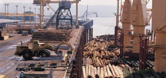China: Prices for imported European spruce logs at record highs