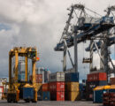 Congestion at New Zealand ports causing logging industry frustration and market fluctuations