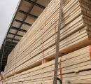 UK: Severe timber shortage as 'perfect storm' brings price hikes and delays