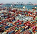 Congestion at Chinese ports puts pressure on softwood log imports