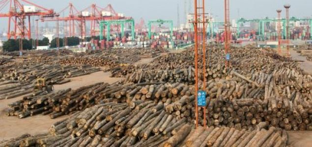 China's imports of logs crash in the first half of the year