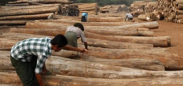 Myanmar to stop teak wood production