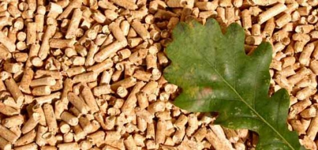 Business potential of the South American wood pellet market
