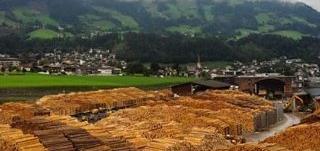Austria: Spruce logs' prices stabilize; good prices for pine and larch