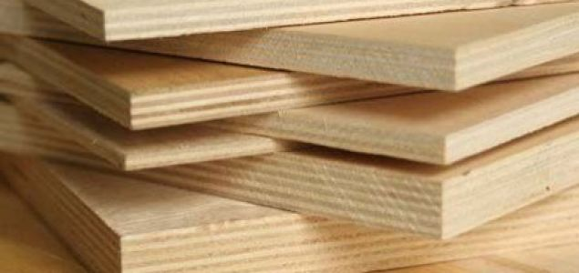 Russia: Birch logs export restriction to help domestic plywood industry