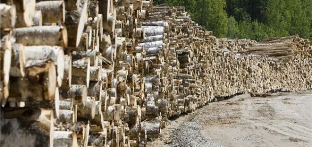 Sweden: Reductions in timber storage regulations