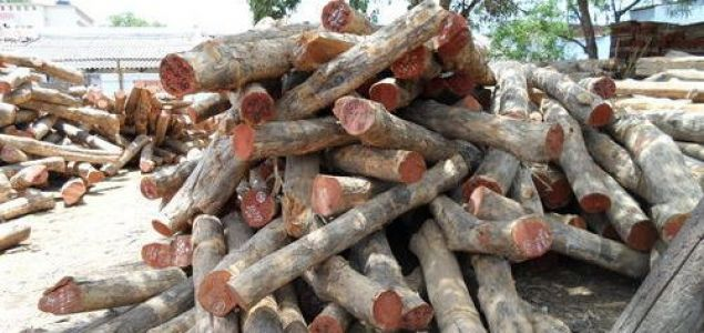 India: Latest prices for imported wood products