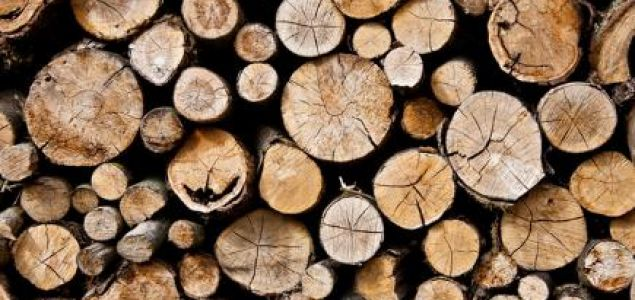 Global sawlog prices on the rise in Q4/2017