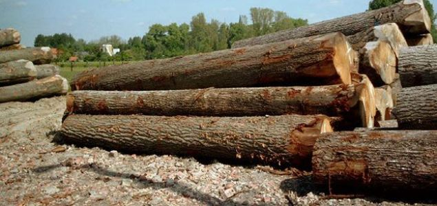 European sawlog prices continued their downward trend in 2016